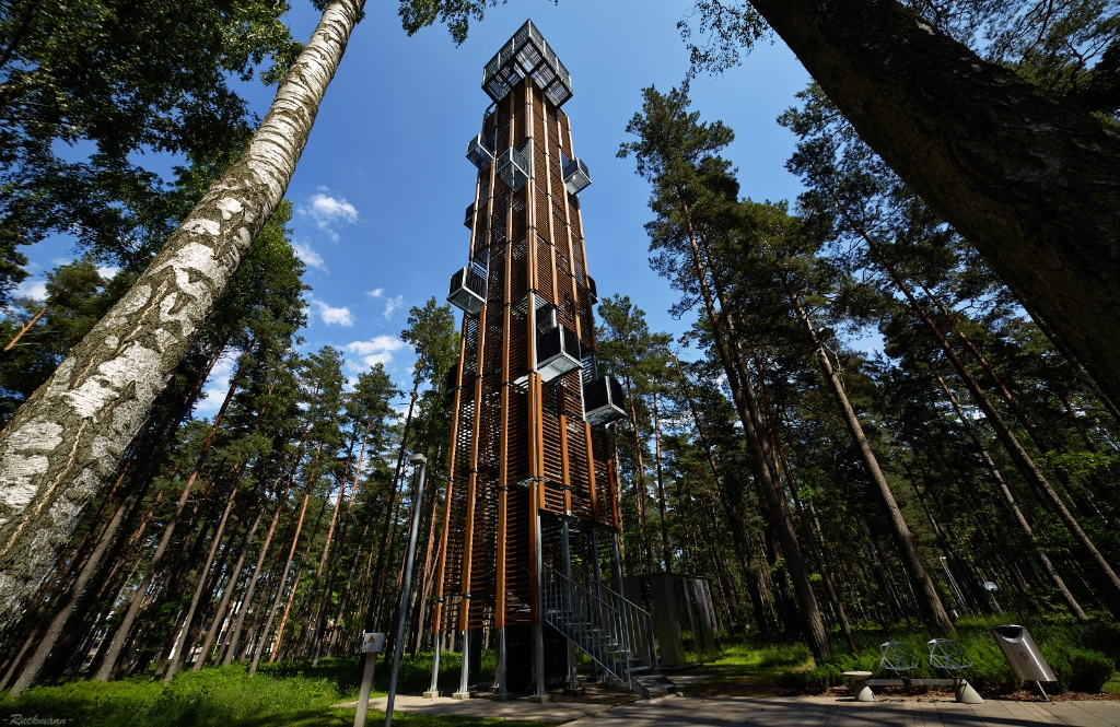 Лесной парк Дзинтари – Арриво Юрмала Зимой