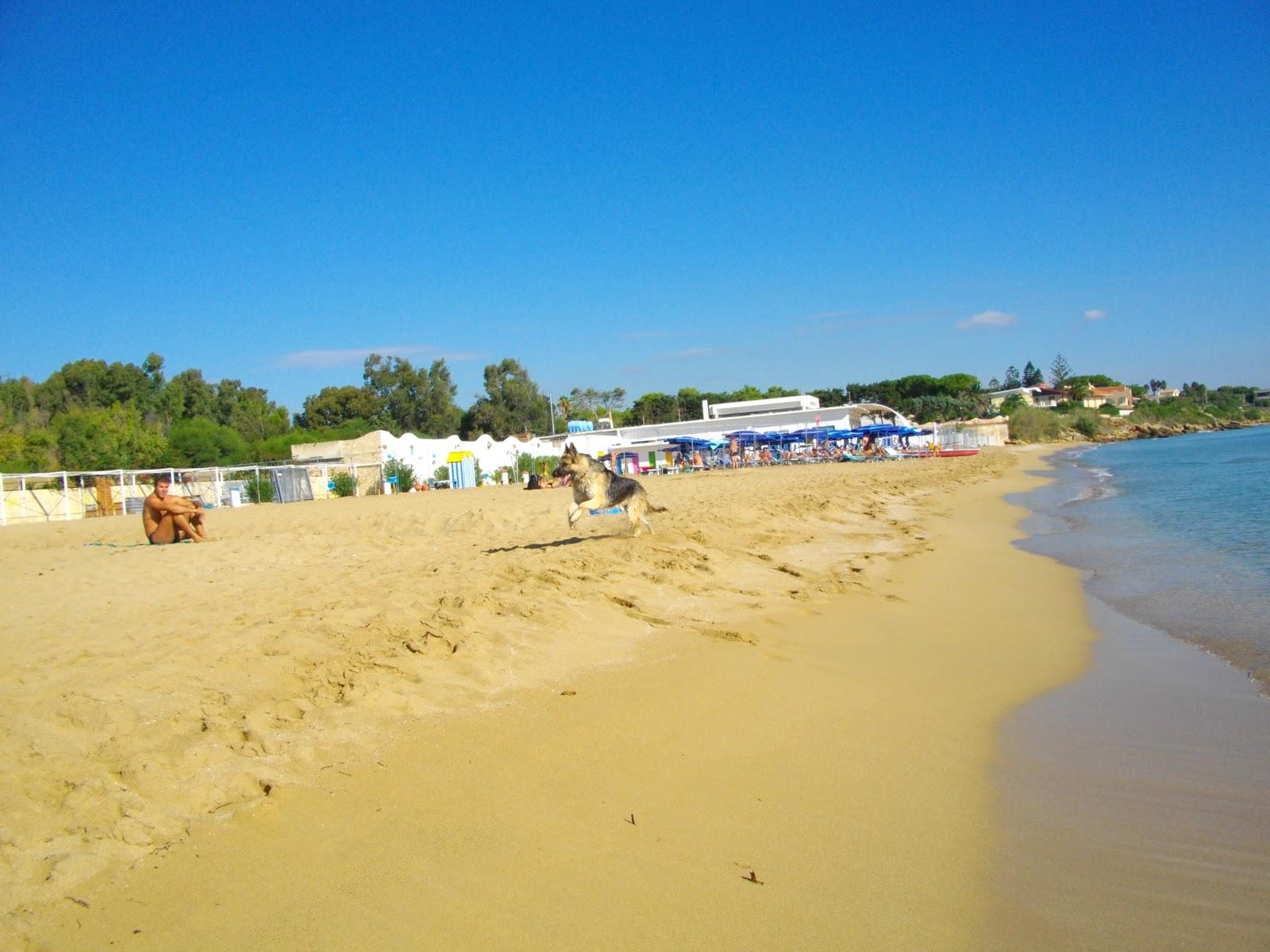 Пляжи в конаково фото