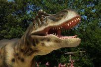 Мир доисторических динозавров и